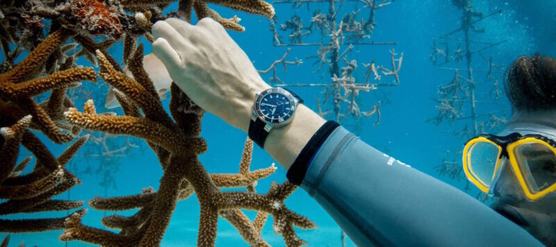 Saving the Reefs with Oris and the Aquis Staghorn Restoration Limited Edition