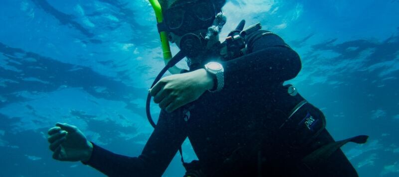 The Worn & Wound Podcast Ep. 80: Diving in Bermuda with the Doxa Sharkhunter and Seiko SKX007